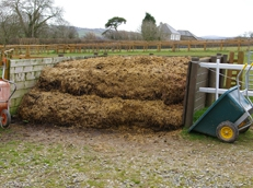 Muck Heap Removal