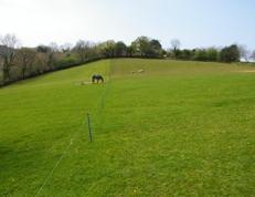 Improving Grass Quantity and Quality