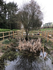 Penrice Wild Fowl Enclosure 2